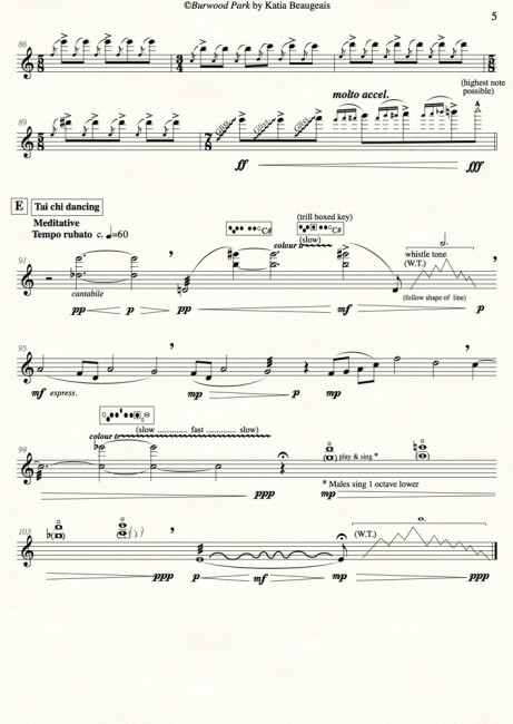 Burwood Park for solo flute - last page