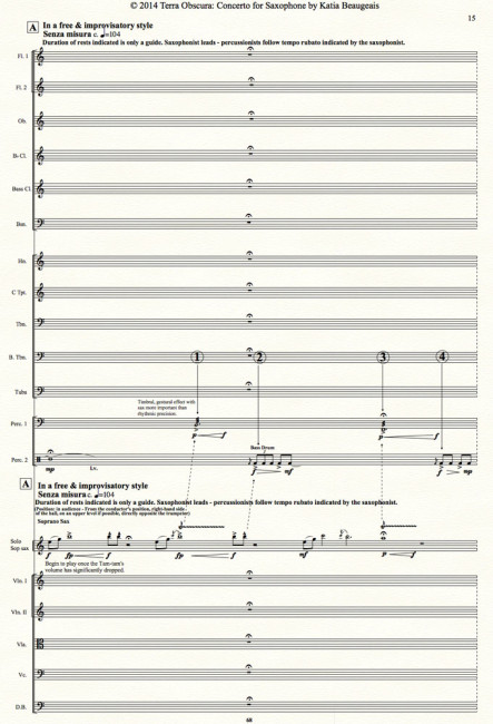 Terra Obscura: Concerto for Saxophone for solo saxophone & chamber orchestra- Movt I p.15