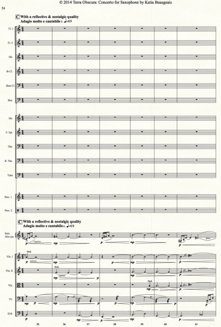 Movt II p.54 - Terra Obscura: Concerto for Saxophone for solo saxophone & chamber orchestra