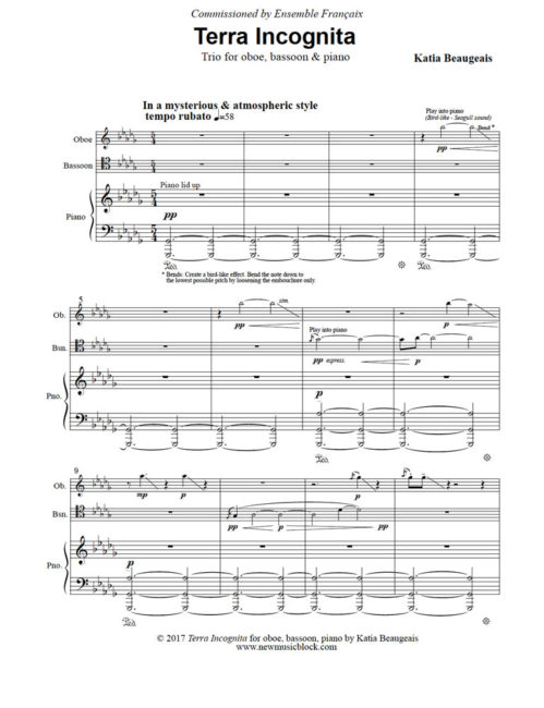 Terra Incognita for oboe, bassoon, piano. Movt I, p.1.